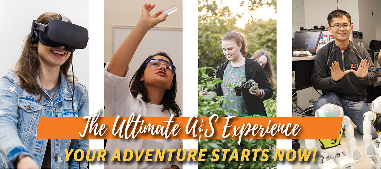 Ultimate A&S experience