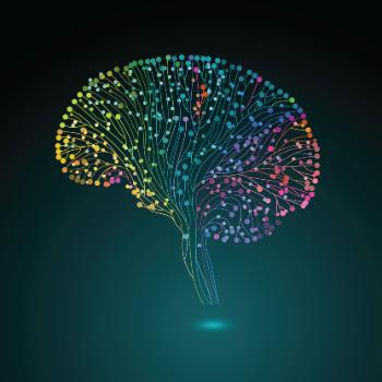 researchers study brain activity fMRI scans